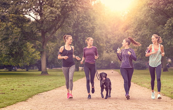 Healthy Group Jog Exercise Dog