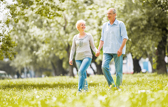 Older Couple Walking Grass